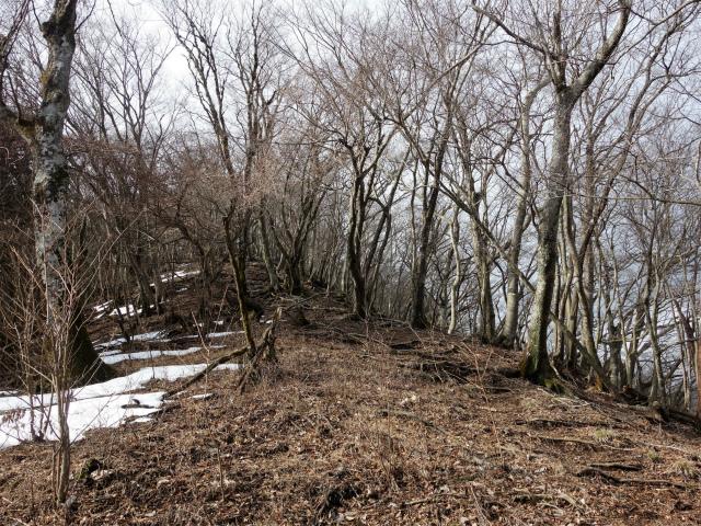 三ノ塔(BOSCO~ヨモギ平)登山口コースガイド 登り【登山口ナビ】