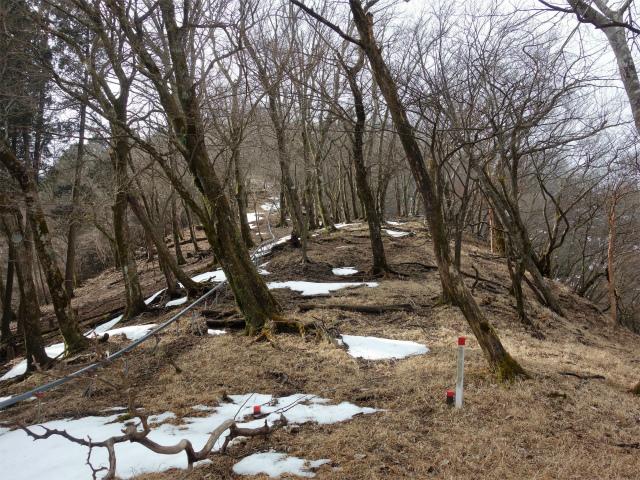 三ノ塔(BOSCO~ヨモギ平)登山口コースガイド 作業用モノレール【登山口ナビ】