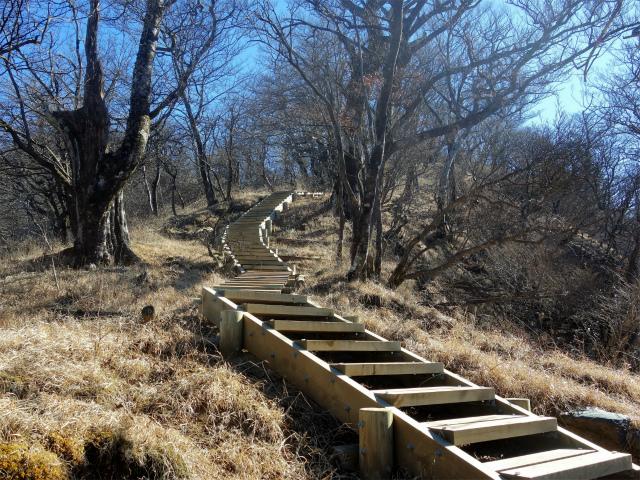 大室山(道志の湯~加入道山)登山口コースガイド 階段【登山口ナビ】