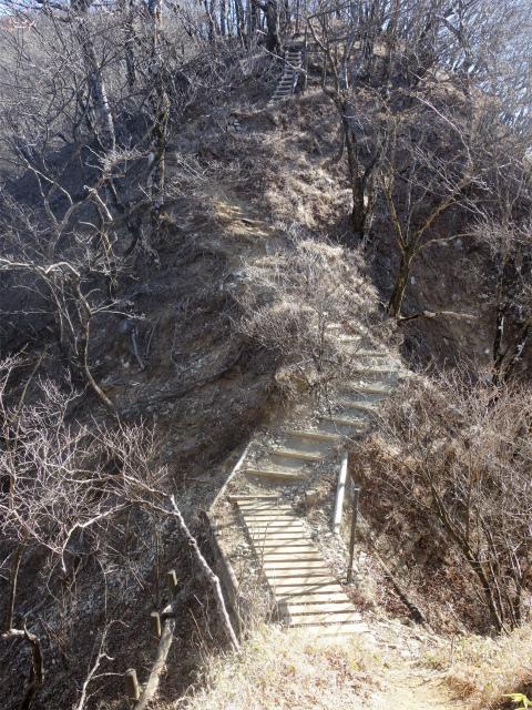 大室山(道志の湯~加入道山)登山口コースガイド 破風口【登山口ナビ】