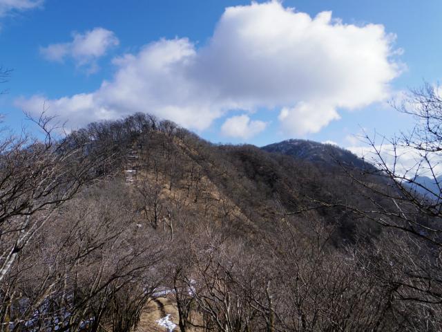 大室山(道志の湯~加入道山)登山口コースガイド【登山口ナビ】