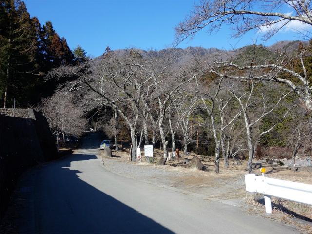 滝子山(南陵/寂ショウ尾根)登山口コースガイド 桜森林公園【登山口ナビ】
