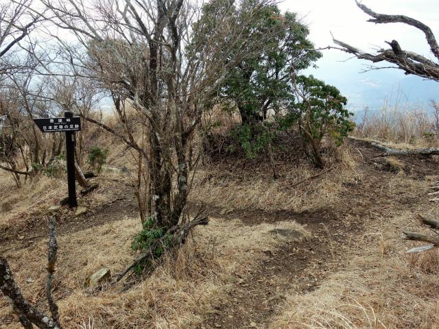 三ノ塔(BOSCO~ヨモギ平)登山口コースガイド 二ノ塔尾根分岐【登山口ナビ】