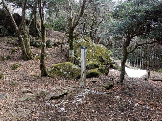 三ノ塔(BOSCO~ヨモギ平)登山口コースガイド 日本武尊足跡の岩【登山口ナビ】