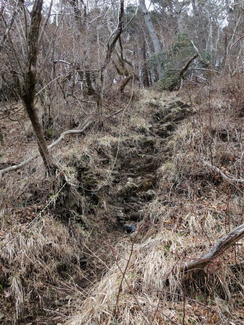 三ノ塔(BOSCO~ヨモギ平)登山口コースガイド ロープの急坂【登山口ナビ】