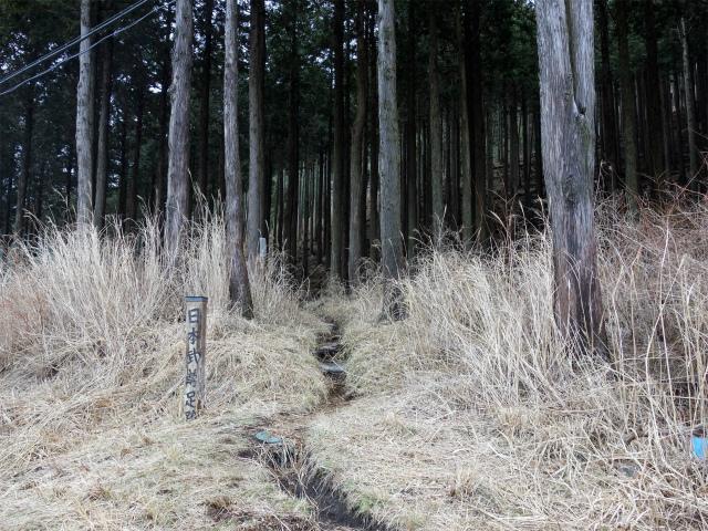 三ノ塔(BOSCO~ヨモギ平)登山口コースガイド 日本武尊足跡入口【登山口ナビ】