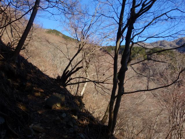 丹沢山(天神尾根~丹沢主脈)登山口コースガイド 表尾根【登山口ナビ】