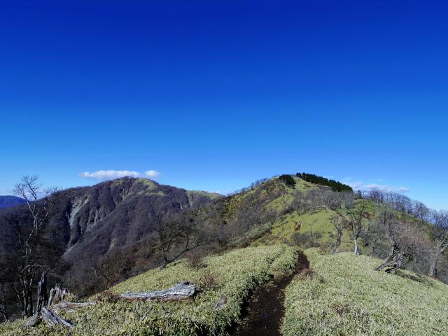 丹沢山(天神尾根~丹沢主脈)登山口コースガイド 笹原【登山口ナビ】