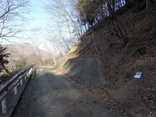 滝子山(南陵/寂ショウ尾根)登山口コースガイド 大鹿林道【登山口ナビ】