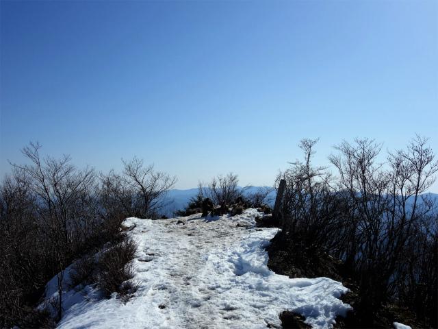 滝子山(南陵/寂ショウ尾根)登山口コースガイド 山頂【登山口ナビ】