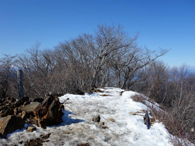 滝子山(道証地蔵~すみ沢コース)登山口コースガイド 山頂【登山口ナビ】
