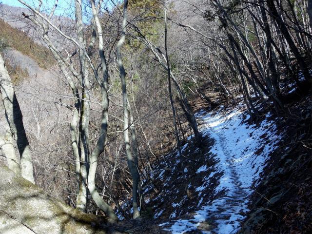 滝子山(道証地蔵~すみ沢コース)登山口コースガイド【登山口ナビ】