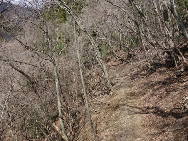 滝子山(道証地蔵~すみ沢コース)登山口コースガイド 高巻き【登山口ナビ】