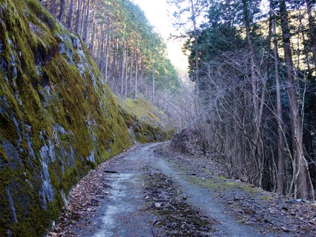 雁ヶ腹摺山(金山鉱泉~姥子山)登山口コースガイド 未舗装路【登山口ナビ】
