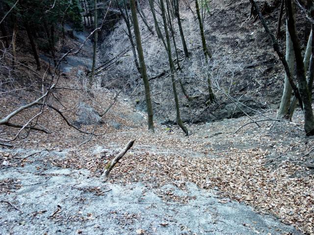 雁ヶ腹摺山(金山鉱泉~姥子山)登山口コースガイド 尾根取り付き【登山口ナビ】