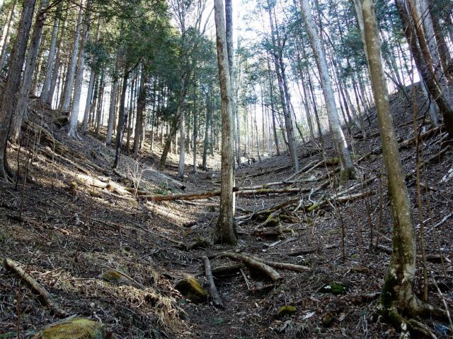 雁ヶ腹摺山(金山鉱泉~姥子山)登山口コースガイド【登山口ナビ】
