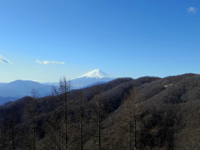 雁ヶ腹摺山(金山鉱泉~姥子山)登山口コースガイド 奈良子林道擁壁上からの富士山【登山口ナビ】