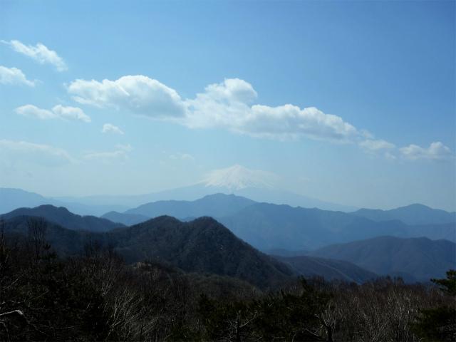 ハマイバ・大蔵高丸(道証地蔵~曲り沢峠)登山口コースガイド 山頂直下からの富士山【登山口ナビ】