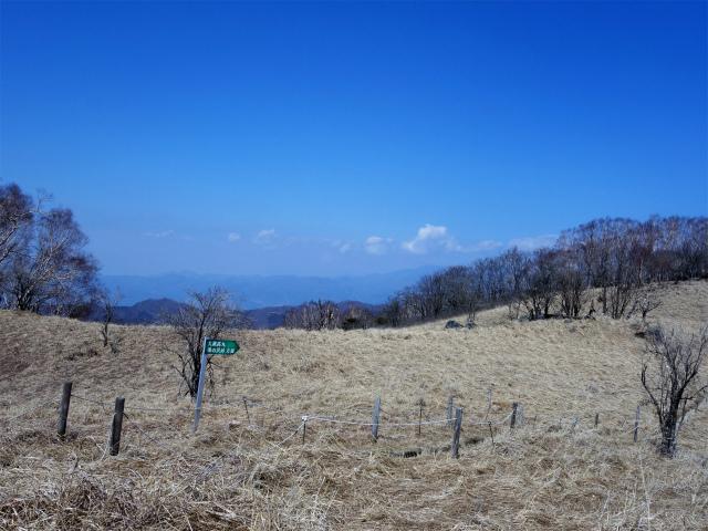 ハマイバ・大蔵高丸(道証地蔵~曲り沢峠)登山口コースガイド 草原からの南アルプス【登山口ナビ】