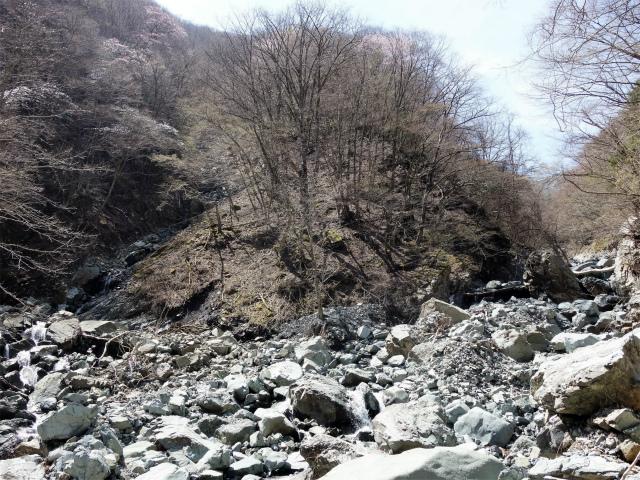 早戸大滝(最新版/台風19号後の状況)コースガイド 本谷沢分岐【登山口ナビ】