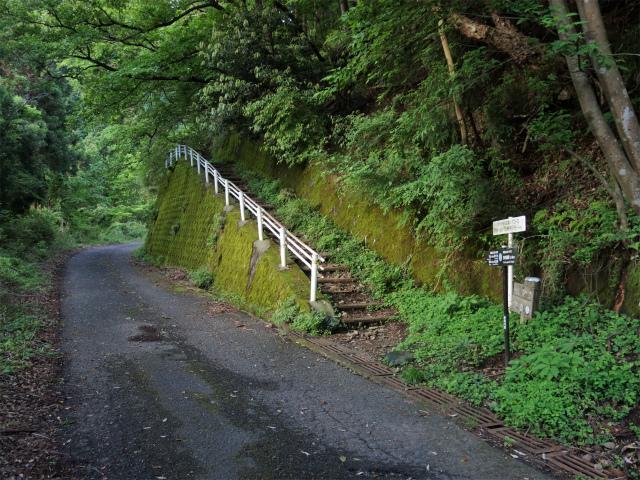 大山(日向~雷ノ峰尾根)登山口コースガイド 九十九曲登山道入口【登山口ナビ】