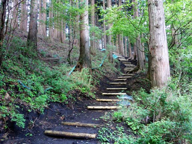 大山(日向~雷ノ峰尾根)登山口コースガイド 階段【登山口ナビ】