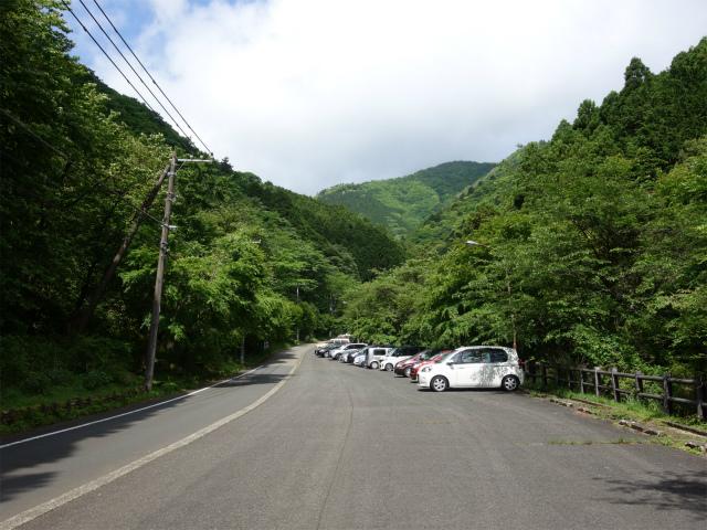 大山(日向~雷ノ峰尾根)登山口コースガイド ふれあいの森駐車場【登山口ナビ】