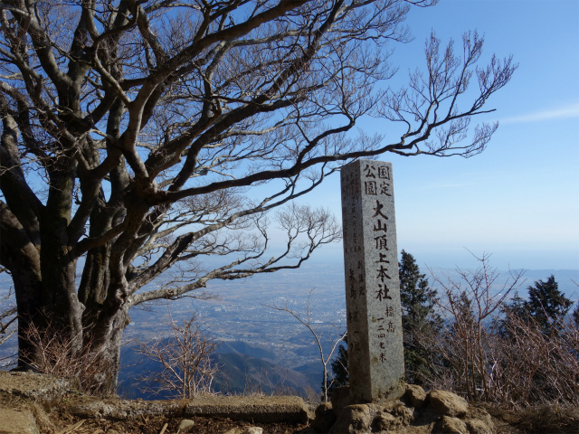 大山(表参道~見晴台周回)登山口コースガイド【登山口ナビ】