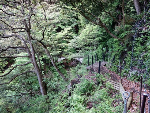 大山(表参道~見晴台周回)登山口コースガイド 二十滝橋【登山口ナビ】