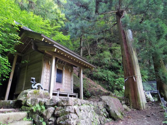 大山(表参道~見晴台周回)登山口コースガイド 二十神社【登山口ナビ】