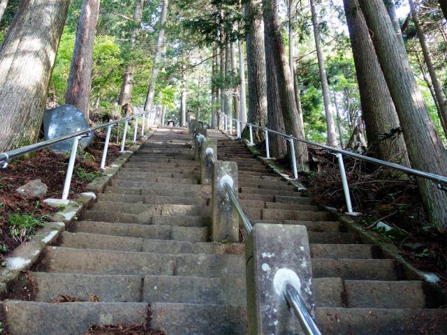 大山(表参道~見晴台周回)登山口コースガイド 急な階段【登山口ナビ】