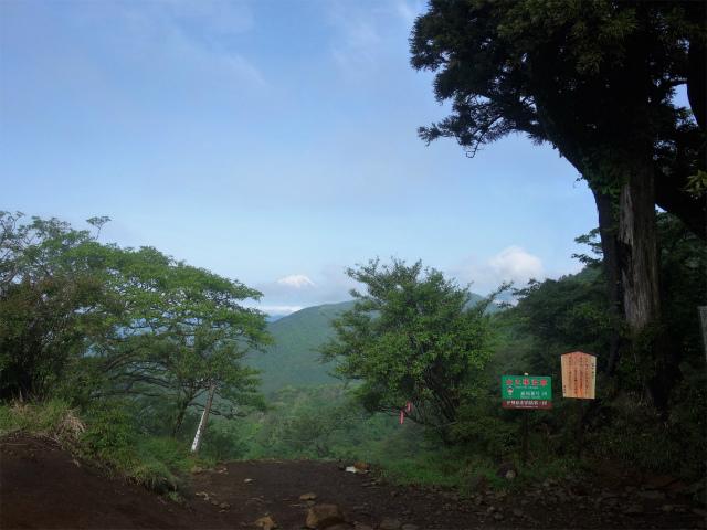大山(表参道~見晴台周回)登山口コースガイド 二十丁目 富士見台【登山口ナビ】