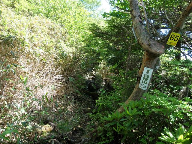 南月山(沼原~白笹山)登山口コースガイド 白笹山0.5km【登山口ナビ】