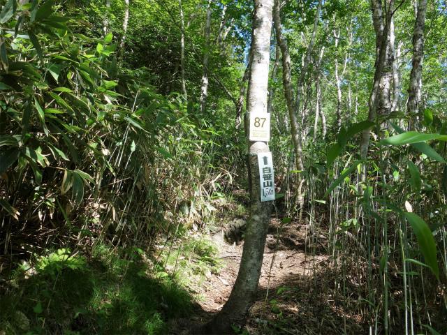 南月山(沼原~白笹山)登山口コースガイド 白笹山1.5km【登山口ナビ】
