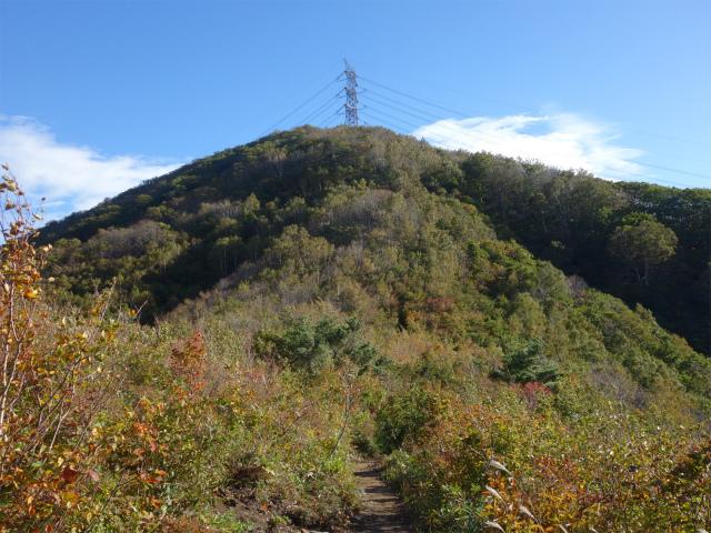 平標山/仙ノ倉山(松手山コース)登山口コースガイド 二合目からの鉄塔【登山口ナビ】