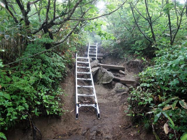 平標山/仙ノ倉山(松手山コース)登山口コースガイド 梯子【登山口ナビ】