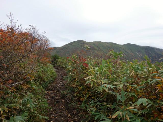 平標山/仙ノ倉山(松手山コース)登山口コースガイド【登山口ナビ】