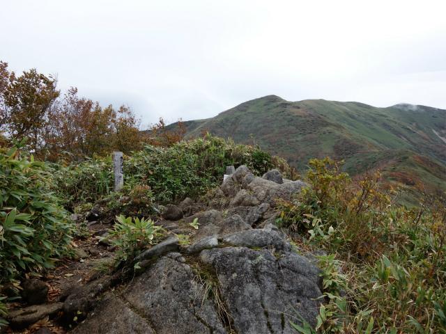 平標山/仙ノ倉山(松手山コース)登山口コースガイド 六合目松手山山頂【登山口ナビ】