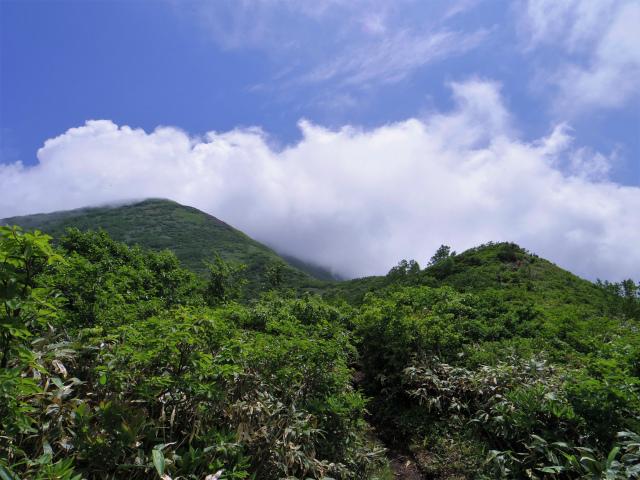 平標山/仙ノ倉山(松手山コース)登山口コースガイド 草原状の稜線【登山口ナビ】