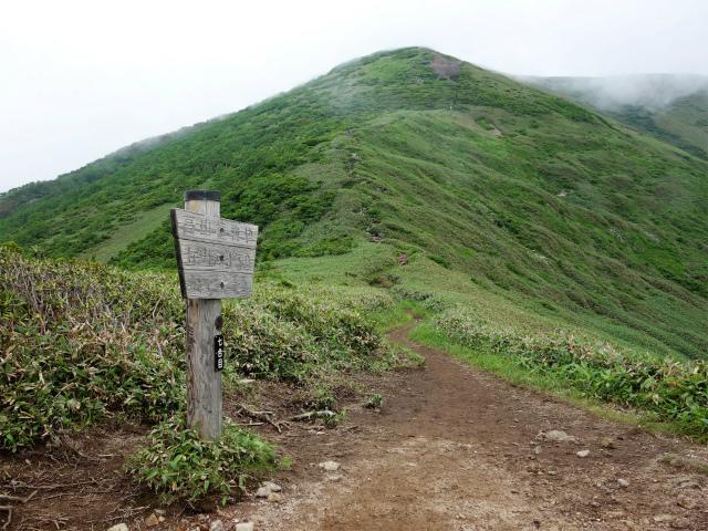 平標山/仙ノ倉山(松手山コース)登山口コースガイド 七合目【登山口ナビ】