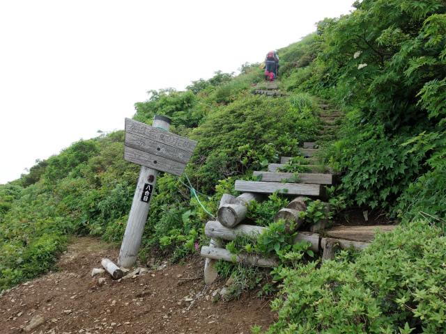 平標山/仙ノ倉山(松手山コース)登山口コースガイド 八合目階段【登山口ナビ】