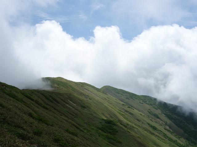 平標山/仙ノ倉山(松手山コース)登山口コースガイド 稜線【登山口ナビ】