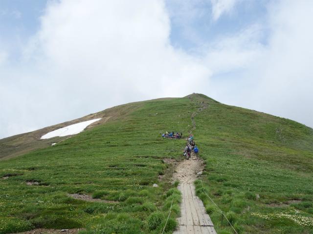 平標山/仙ノ倉山(松手山コース)登山口コースガイド 平標山東面のベンチ【登山口ナビ】