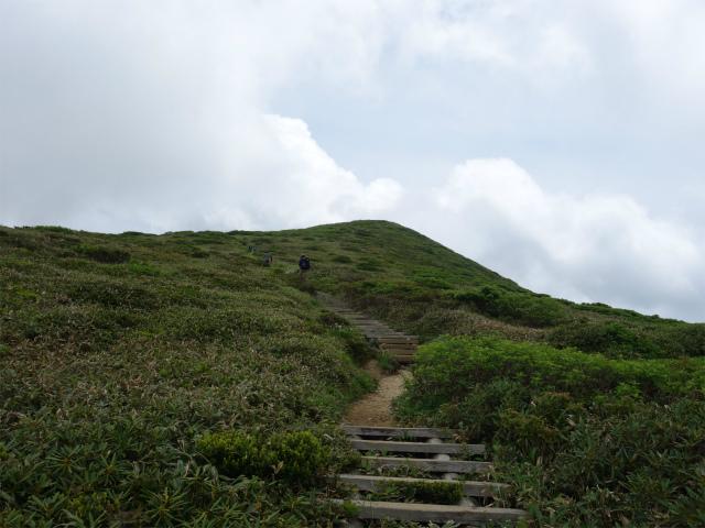 平標山/仙ノ倉山(松手山コース)登山口コースガイド 小ピーク【登山口ナビ】
