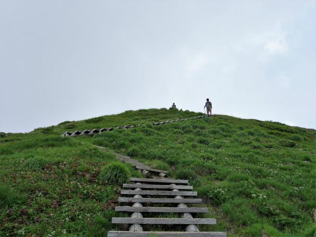 平標山/仙ノ倉山(松手山コース)登山口コースガイド 仙ノ倉山直下の階段【登山口ナビ】
