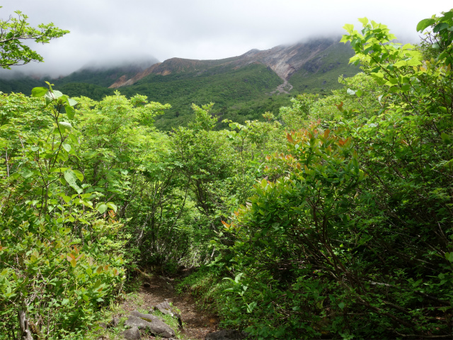 那須岳(沼原~姥ヶ平~茶臼岳)登山口コースガイド 茶臼岳の眺望【登山口ナビ】
