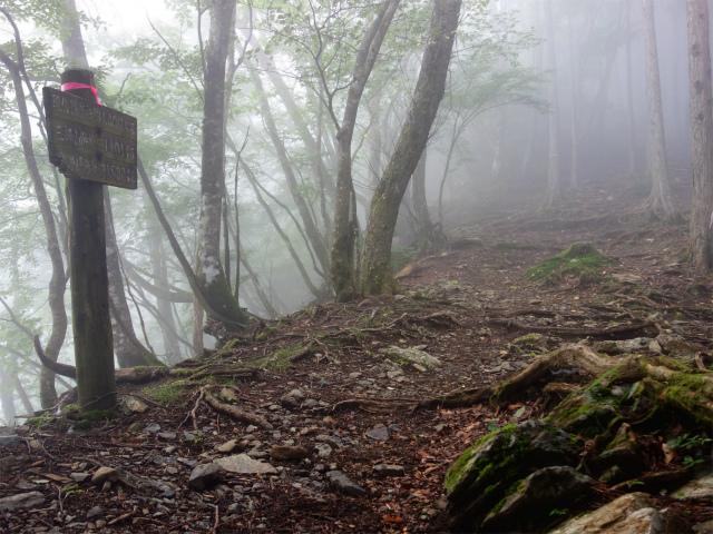 雲取山(霧藻ヶ峰・三峰ルート)登山口コースガイド 標高1400m案内板【登山口ナビ】