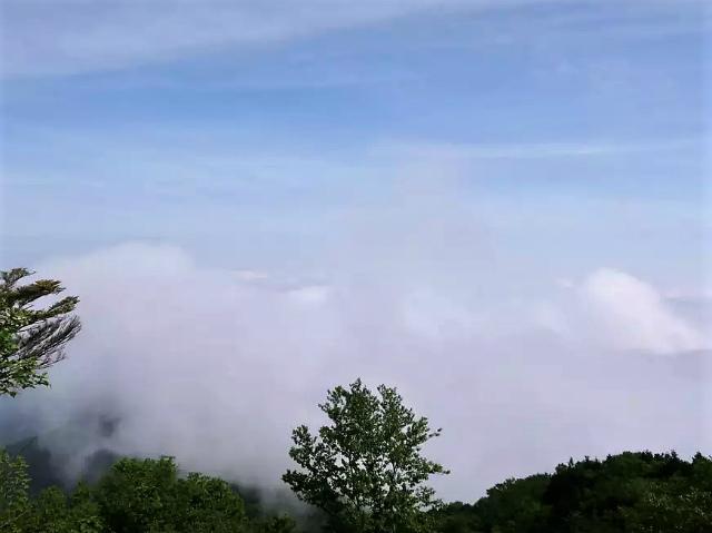 雲取山(霧藻ヶ峰・三峰ルート)登山口コースガイド 三角点のピーク【登山口ナビ】