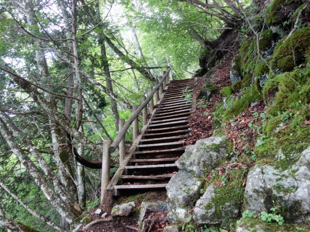 雲取山(霧藻ヶ峰・三峰ルート)登山口コースガイド 階段【登山口ナビ】