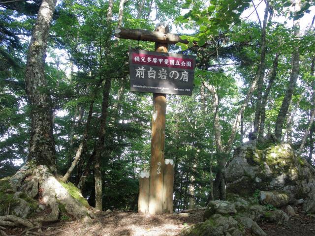 雲取山(霧藻ヶ峰・三峰ルート)登山口コースガイド 前白岩の肩【登山口ナビ】